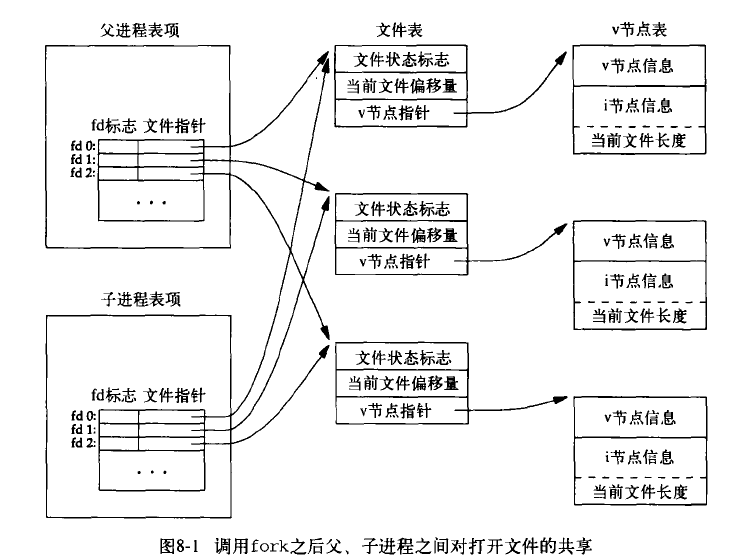 ../../_images/share-file-3.png
